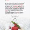 Santa's Gift Heading Your Way