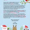 Winter Wonderland The North Pole